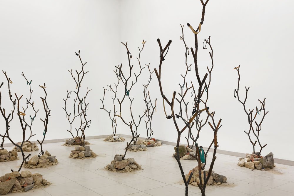 Kader Attia, Intifada: The Endless Rhizomes of Revolution, 2016